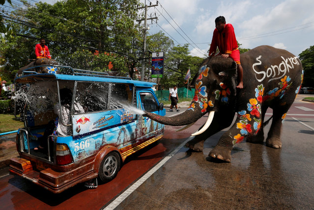 An elephant sprays tourists with water in celebration of the Songkran Water Festival in Ayutthaya province, north of Bangkok, Thailand April 11, 2017. (Photo by Chaiwat Subprasom/Reuters)