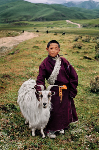 """A young nomad with his goat, Litang, Tibet, 2001. """"I photographed this nomad boy and his family's goat near Litang, a major centre of Tibetan culture. With an elevation of nearly 4,000 metres (13,000 ft) it has a subarctic climate characterised by long, cold winters, and short summers. These goats produce fine cashmere wool highly prized for clothing and textiles"""". (Photo by Steve McCurry/The Guardian)"""