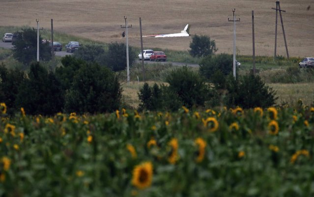 The wreckage of a Malaysia Airlines Boeing 777 plane (back) is seen, with sunflowers in the foreground, near the settlement of Grabovo in the Donetsk region, July 17, 2014. The Malaysian airliner Flight MH-17 was brought down over eastern Ukraine on Thursday, killing all 295 people aboard and sharply raising stakes in a conflict between Kiev and pro-Moscow rebels in which Russia and the West back opposing sides. (Photo by Maxim Zmeyev/Reuters)