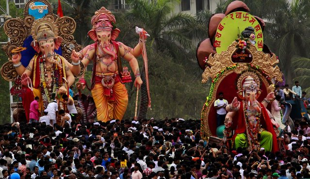 Hindu devotees bring large idols of the elephant-headed Hindu god Ganesha to immerse them in the Arabian Sea, on the final day of the festival of Ganesh Chaturthi in Mumbai, on September 8, 2014. Every year millions of devout Hindus immerse the idols into oceans and rivers during the ten-day long Ganesh Chaturthi festival that celebrates the birth of Ganesha. (Photo by Rafiq Maqbool/AP Photo)