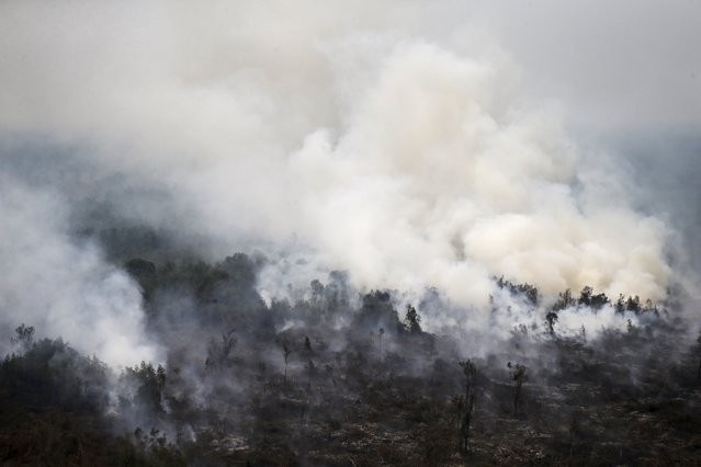 An aerial view of a burning forest at Ogan Komering Ulu area in Indonesia's south Sumatra province September 10, 2015. (Photo by Reuters/Beawiharta)