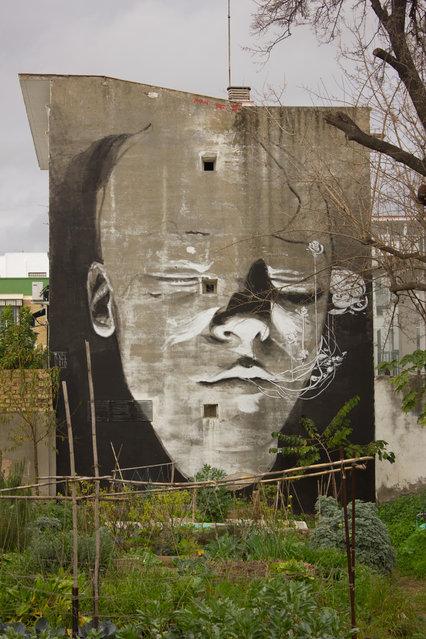 Huerta Del Rey Moro (Urban Garden), Sevilla 2013. (Photo by Alejandro Dorda Mevs)