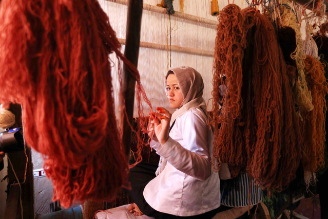 Afghan girls learn the skills to weave rugs at a small factory in Enjil district of Herat province, Afghanistan, 26 November 2017. Afghanistan's hand-woven rugs require skilled labor and are in great demand all over the world. (Photo by Jalil Rezayee/EPA/EFE)