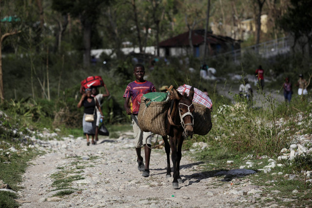 A boy walks with a horse carrying goods to an area affected by Hurricane Matthew in Camp Perrin, Haiti, October 8, 2016. (Photo by Andres Martinez Casares/Reuters)