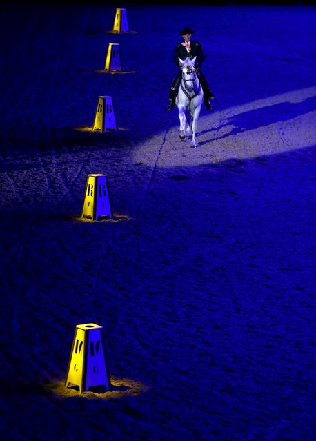 A rider of The Royal Andalusian School of Equestrian Art performs during the opening show of the Sicab International Pre Horse Fair which is dedicated in full and exclusively to the purebred Spanish horse in the Andalusian capital of Seville, southern Spain, November 17, 2015. (Photo by Marcelo del Pozo/Reuters)