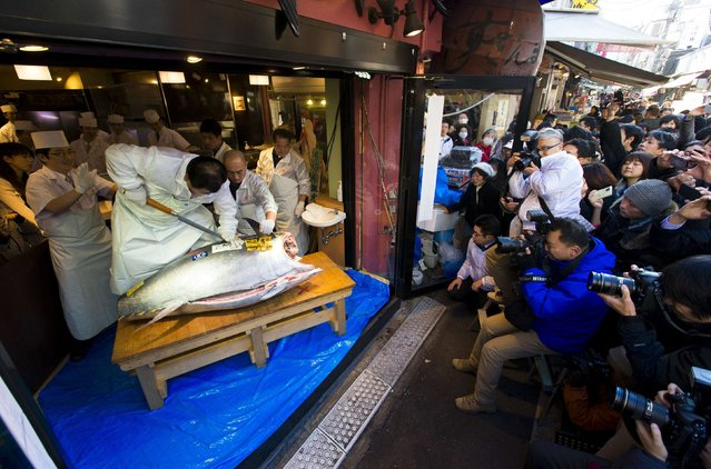 The President of the sushi restaurant chain Sushi Zanmai, Kiyoshi Kimura, cuts a blue fin tuna outside his main restaurant at the outer Tsukiji market in Tokyo January 5, 2015. (Photo by Thomas Peter/Reuters)