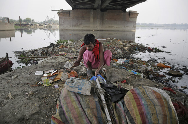 In this photo taken May 28, 2018, Ram Nath, 40, sorts reusable trash he fished out from Yamuna, India's sacred river that flows through the capital of New Delhi. For more than 25 years, Ram Nath has lived on the banks of the Yamuna River under a 19th-century iron bridge. Each morning, the wiry man walks a few steps from his makeshift hut and enters the black, sludgy waters of one of India's most polluted rivers. (Photo by Altaf Qadri/AP Photo)