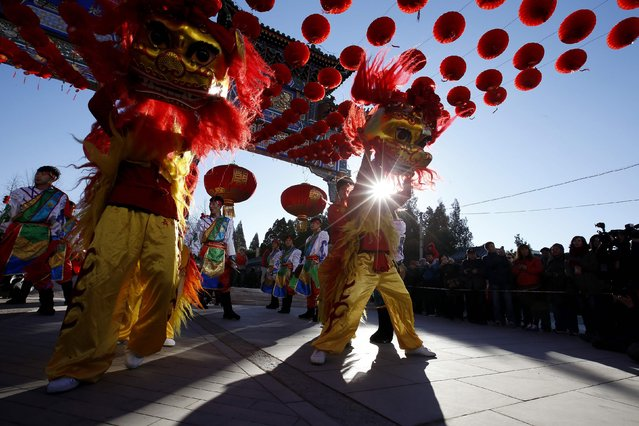 Lion dancers perform for the opening of the Temple Fair, as part of Chinese New Year celebrations, at Ditan Park, also known as the Temple of Earth, in Beijing, February 18, 2015. (Photo by Kim Kyung-Hoon/Reuters)