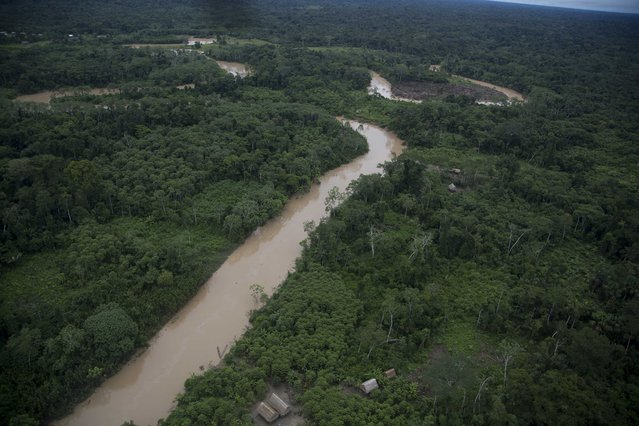 This March 16, 2015 photo shows where Ashaninka Indians live in hamlets, along the Putaya River, in Peru's Ucayali department. Illegal logging persists unabated in this remote Amazon community where four indigenous leaders who resisted it were slain in September. (Photo by Martin Mejia/AP Photo)