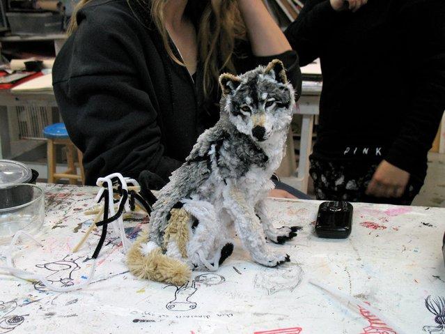 New Wolf. (Photo by Meg Biddle/Lauren Ryan)
