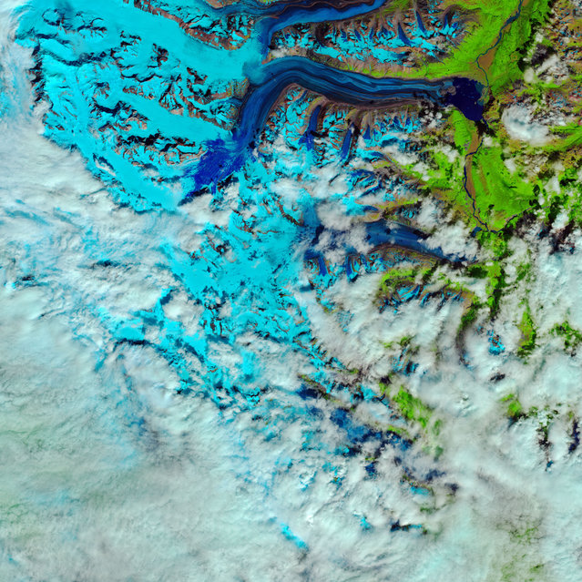 Snow from the previous winter melts into slush on Canada's Lowell Glacier, in this false-color satellite image showing frozen (light blue), meltwater (dark blue), rocks (brown) and vegetation (green) and the progression of rapid snow melt in the Kluane National Park in the Yukon Territory, Canada, July 26, 2018. (Photo by NASA/Joshua Stevens/USGS/European Space Agency/Kasha Patel/Handout via Reuters)
