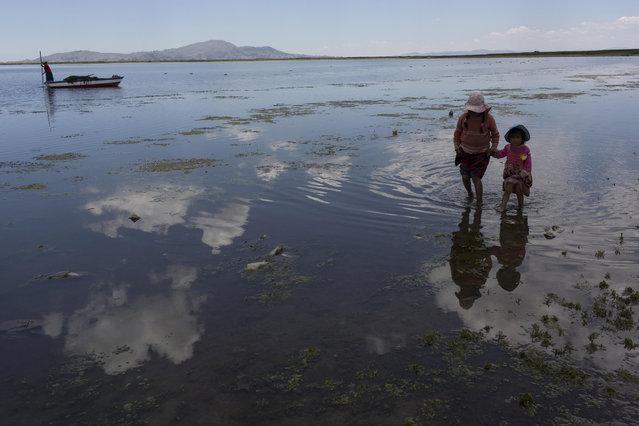 In this February 2, 2017 photo, cousins from the Avila family search for discarded toys on the shores of Lake Titicaca, in Coata in the Puno region of Peru. The shores of South America's largest lake are littered with dead frogs, discarded paint buckets and bags of soggy trash. Less visible threats lurk in the water itself: highly toxic levels of lead and mercury. (Photo by Rodrigo Abd/AP Photo)