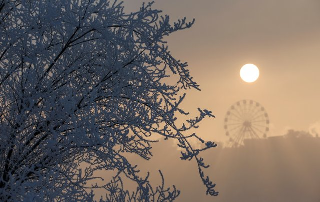 The sun emerges on a foggy day after snowfall in Almaty, Kazakhstan on December 16, 2019. (Photo by Pavel Mikheyev/Reuters)