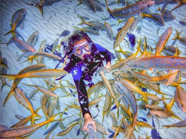 The selfies were taken in the Bahamas by Stuart's Cove dive instructor and native of the island, Amelia Klonaris. (Photo by Amelia Klonaris/Mediadrumworld)
