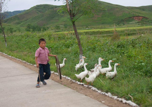 A kid with his gooses on the highway side. Most of the time people use the highway for their daily activities and are surprised to see cars or buses on it. (Photo by Eric Lafforgue/Exclusivepix Media)