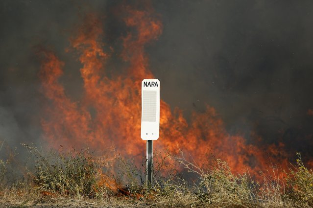Flames from the so-called Jerusalem Fire erupt near a marker for Napa County in Lake County, California, August 12, 2015. (Photo by Robert Galbraith/Reuters)