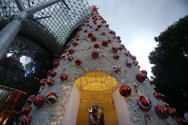 People take pictures inside a Christmas tree along Orchard Road in Singapore December 18, 2014. (Photo by Edgar Su/Reuters)