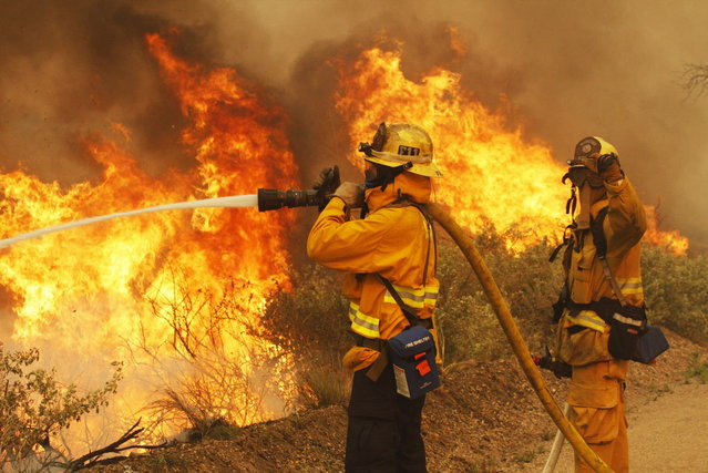 Firefighters battle the Springs Fire at Point Mugu State Park May 3, 2013. A wind-driven wildfire raged along the California coast north of Los Angeles early on Friday, threatening some 3,000 homes and prompting evacuations of a university campus and several  residential areas. The so-called Springs Fire, which engulfed several farm buildings and recreational vehicles but so far has destroyed no homes, had consumed 8,000 acres of dry, dense chaparral and brush by late Thursday, fire officials said. (Photo by Jonathan Alcorn/Reuters)