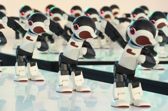 """Humanoid robot """"Robi"""", a self-build robot with parts provided by weekly magazine of Italian publisher Deagostini, dance during an event in Tokyo on January 20, 2015. One hundred robots performed at the event to commemorate the release of the new series of the magazine. (Photo by Toru Yamanaka/AFP Photo)"""