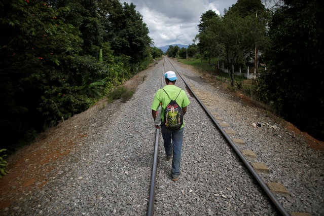 "An immigrant walks along a railroad toward the premises of a group called ""Las Patronas"" (The bosses), a charitable organization that feeds Central American immigrants on their way to the border with the United States who travel atop a freight train known as ""La Bestia"", in Amatlan de los Reyes, in Veracruz state, Mexico October 22, 2016. (Photo by Daniel Becerril/Reuters)"