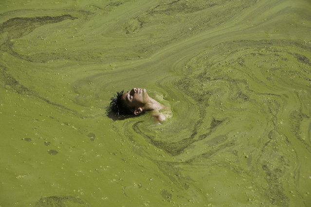 A boy swims in a pond on the outskirts of Jammu, India on June 5, 2007. (Photo by Amit Gupta/Reuters)