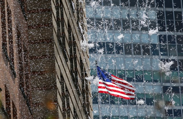 Paper falls from buildings during the ticker tape parade for the U.S. women's soccer team up Broadway in lower Manhattan to celebrate their World Cup final win over Japan in New York, July 10, 2015. (Photo by Mike Segar/Reuters)