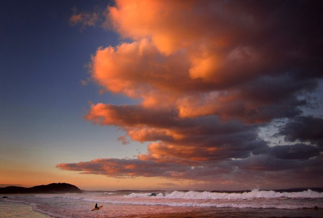 A surfer holding her board wades through the surf as clouds above are lit by the setting sun at Mollymook Beach on the south coast of New South Wales May 8, 2014. (Photo by David Gray/Reuters)