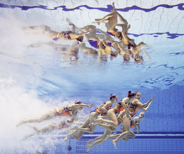 Belarus perform their routine during the Womens Team Technical Synchronised Swimming Competition at Europa-Sportpark on August 13, 2014 in Berlin, Germany. (Photo by Adam Pretty/Bongarts/Getty Images)