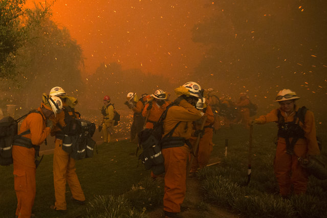 Inmate handcrew firefighters shield themselves from embers and heavy smoke as flames close in on houses at the Sand Fire on July 23 2016 near Santa Clarita, California. Fueled by temperatures reaching about 108 degrees fahrenheit, the wildfire began yesterday has grown to 11,000 acres. (Photo by David McNew/AFP Photo)