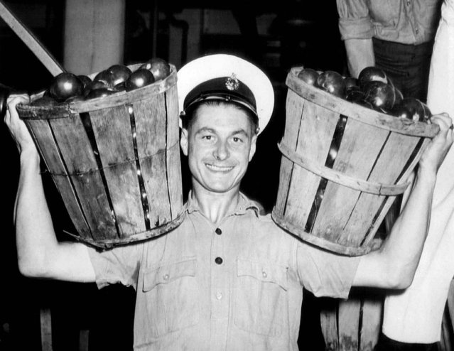 British sailors are helping in the manpower shortage by unloading tomatoes at the Campbell Soup Co. Fred Peacock at the unloading platform with two baskets in Camden, New Jersey, September 8, 1944. (Photo by AP Photo)