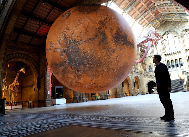 """In this image released on 17th February 2021, artist Luke Jerram looks on during the """"Mars"""" installation by Luke Jerram photocall at Natural History Museum on January 29, 2021 in London, England. (Photo by Chris Jackson/Getty Images)"""