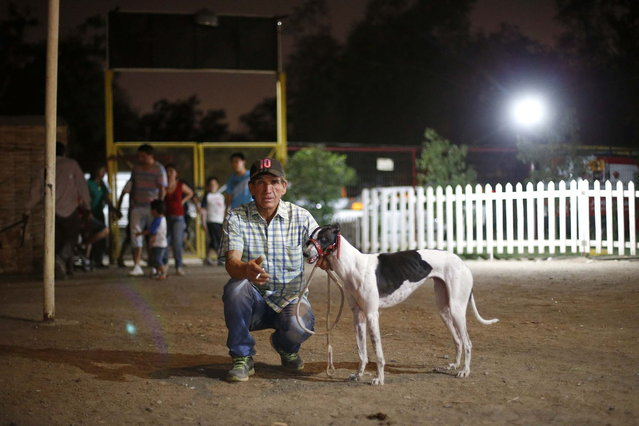 A greyhound owner poses for a picture during a race at Santiago city, March 8, 2014. (Photo by Ivan Alvarado/Reuters)