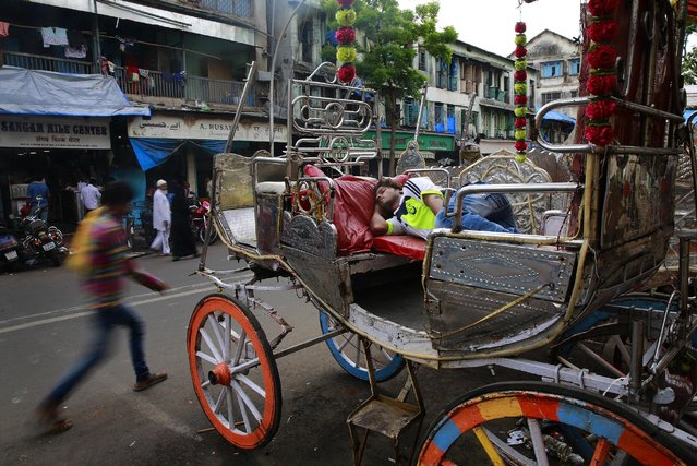 """In this June 16, 2015 photo, an Indian coachman sleeps on his Victoria horse-drawn carriage outside a stable in Mumbai, India. Drivers of Mumbai's iconic horse-drawn carriages can't imagine not plying the roads pulling photo-snapping tourists atop their kitsch-covered chariots. Yet that time is coming, thanks to a court order calling such superfluous """"joyrides"""" a form of animal cruelty and banning them in India's financial capital from June 2016. (Photo by Rafiq Maqbool/AP Photo)"""