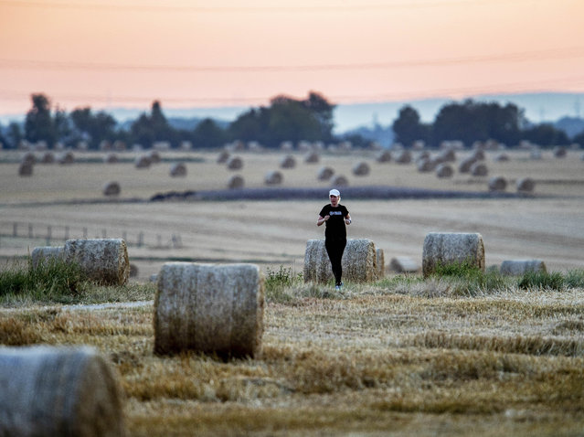 A woman runs along straw bales between fields in Frankfurt, Germany, early Wednesday, July 24, 2019. (Photo by Michael Probst/AP Photo)