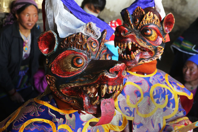 Elaborately dressed monks costumed as dogs prepare to perform ceremonial dances during the Tenchi Festival on May 26, 2014 in Lo Manthang, Nepal. The Tenchi Festival takes place annually in Lo Manthang, the capital of Upper Mustang and the former Tibetan Kingdom of Lo. Each spring, monks perform ceremonies, rites, and dances during the Tenchi Festival to dispel evils and demons from the former kingdom. (Photo by Taylor Weidman/Getty Images)