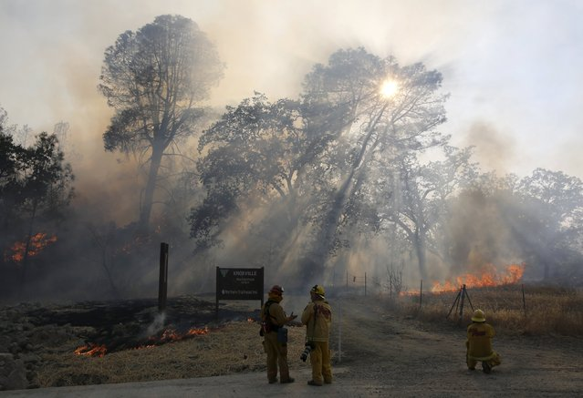Firefighters look on during the Jerusalem Fire along Morgan Valley Road in Lake County, California August 12, 2015. (Photo by Robert Galbraith/Reuters)