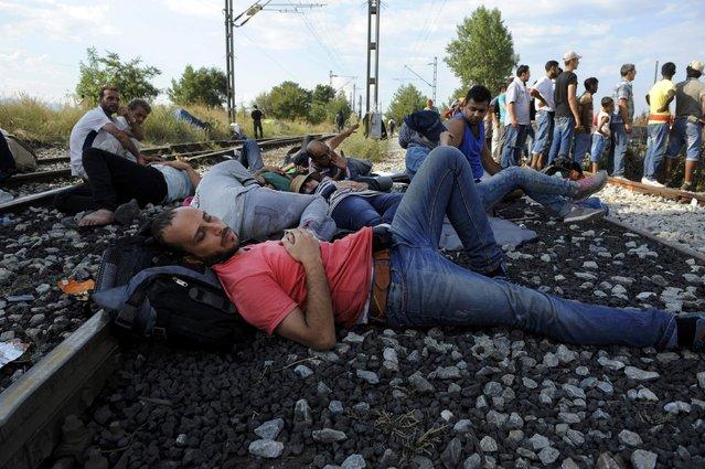 A migrant sleeps next to the train tracks near the village of Idomeni at the Greek-Macedonian border, August 20, 2015. (Photo by Alexandros Avramidis/Reuters)