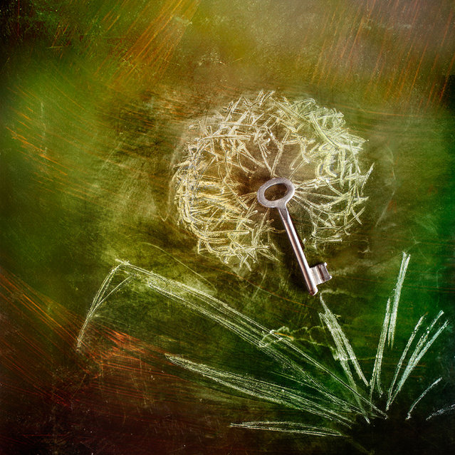 A dandelion flower made using chalk and keys. (Photo by Stanislav Aristov/Caters News)