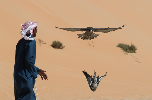 An Emirati falconer trains his bird on January 1, 2017, during the Liwa Moreeb Dune Festival in the Liwa desert, some 250 kilometres southwest of Abu Dhabi. The festival, which attracts participants from around the Gulf region, includes a variety of races (cars, bikes, falcons, camels and horses) or other activities aimed at promoting the country's folklore. (Photo by Karim Sahib//AFP Photo)