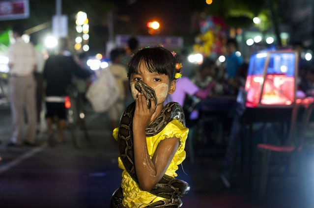 In this picture taken on October 6, 2014, a girl kisses a snake during the Thadingyut full moon day festival in Yangon. The lighting festival is celebrated yearly to welcome Buddha's descent from the heaven. (Photo by Ye Aung Thu/AFP Photo)