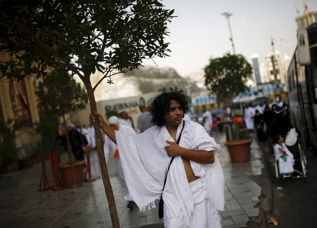 A Muslim pilgrim holds a tree as he stands on the roadside ahead of the annual haj pilgrimage in Mecca September 22, 2015. (Photo by Ahmad Masood/Reuters)