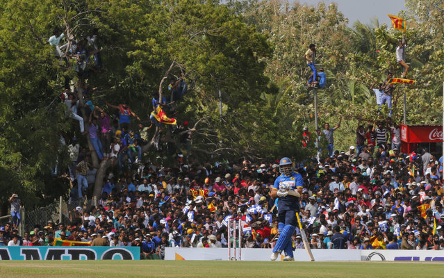 Sri Lankan cricket fans watch Tillakaratne Dilshan, foreground, from elevated positions during the third one day international cricket match between Australia and Sri Lanka in Dambulla, Sri Lanka, Sunday, August 28, 2016.The match is the final one-day international for Sri Lankan opener Dilshan. (Photo by Eranga Jayawardena/AP Photo)