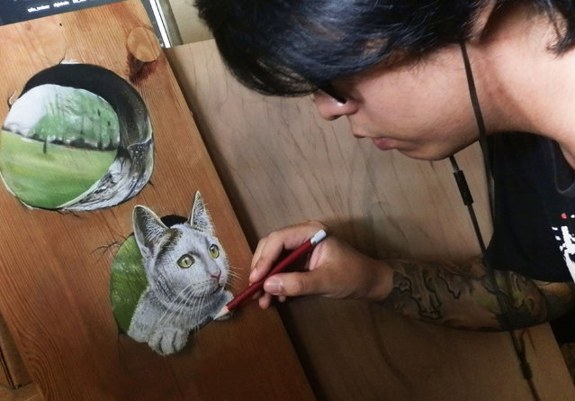 Ivan Hoos drawing of a cat peeping through hole in a piece of wood. (Photo by Ivan Hoo/Caters News)