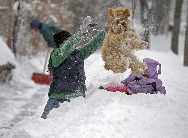 Lindsay Knutson, left, plays in the heavy snow with her family dog, Aspen, and daughter Flora Bejblik, 4, cq, as her husband Bob Bejblik, rear left, shovels, Tuesday, March 5, 2013 in southwest Minneapolis. The National Weather Service predicted a two-day snow total of 8 to 12 inches for much of southeastern and east-central Minnesota, including the Twin Cities. (Photo by Elizabeth Flores/AP Photo/The Star Tribune)