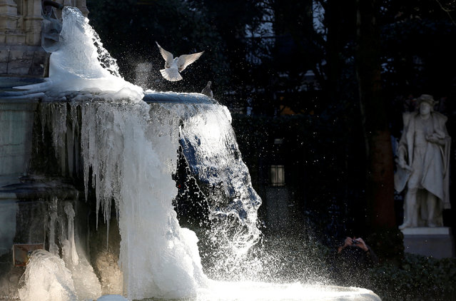 Pigeons are seen as ice partially covers the fountain of the Counts of Egmont and Hornes on a cold winter day in central Brussels, Belgium, February 28, 2018. (Photo by Francois Lenoir/Reuters)