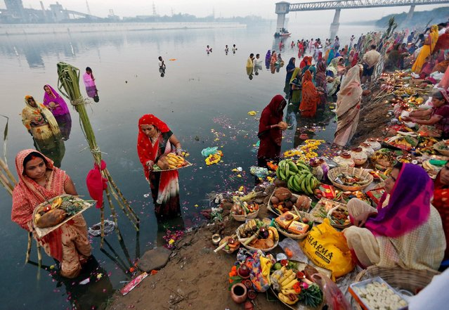 Hindu devotees hold offerings as they worship the Sun god in the waters of the Sabarmati river during the religious festival of Chhat Puja in Ahmedabad, India, November 7, 2016. (Photo by Amit Dave/Reuters)
