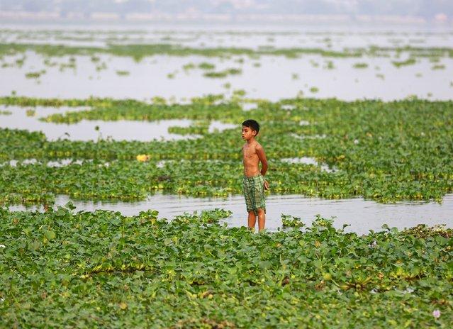 A boy stands in the Taungthaman lake  near U Bein bridge in Mandalay March 22, 2015. (Photo by Soe Zeya Tun/Reuters)