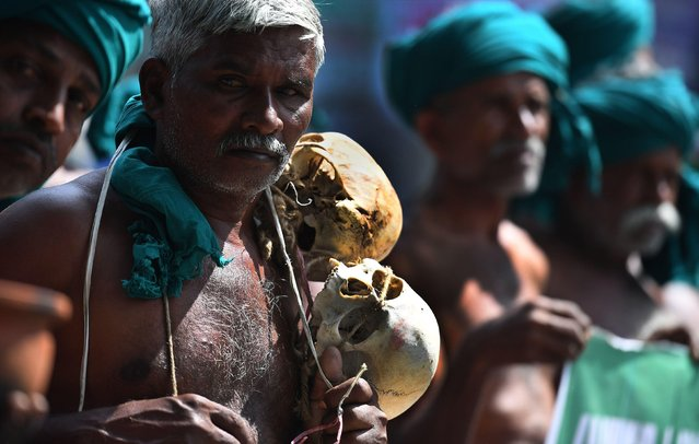 An Indian farmer from Tamil Nadu state wearing a necklace of human skulls representing suicides by agricultural workers takes part in a protest with other farmers in New Delhi on March 15, 2017. Tamil Nadu state farmers protested to demand a profitable price for their agricultral products, and called for the formation of management committee for solving Cauvery river water disputes. More than 200 farmers have committed suicide in Tamil Nadu in recent months following crop failure due to poor rainfall and inadequate water for irrigation. (Photo by Prakash Singh/AFP Photo)