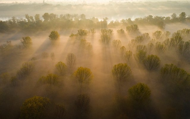 In this picture taken with a drone fog covers the ground on Szentendre Island near Pocsmegyer, northern Hungary, 19 October 2019. (Photo by Balazs Mohai/EPA/EFE/Rex Features/Shutterstock)
