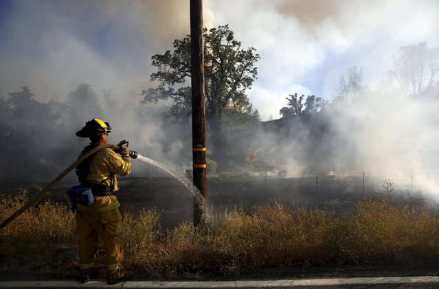 A firefighter douses a utility pole along Morgan Valley Road during the Jerusalem Fire in Lake County, California August 12, 2015. (Photo by Robert Galbraith/Reuters)